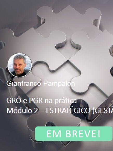 GRO e PGR – EAD (Módulos 1 e 2 – do Operacional ao Tático)