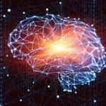 Os 3 Filtros Cerebrais que nos Levam a Fazer Nossas Escolhas